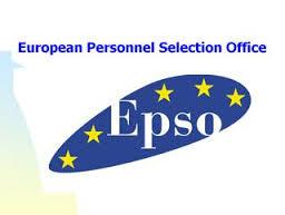 O carieră cu o dimensiune europeană