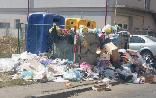 Tribunalul Gorj: Fără gunoaie din alte localități la Târgu Jiu